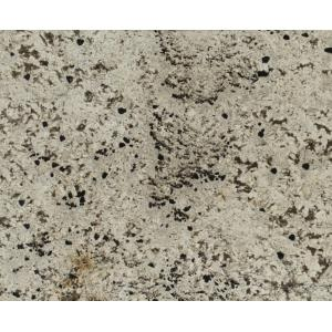 Image for Granite 21910-1-1: Delicatus